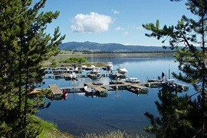 Madison Arm Resort - Marina, Camping, Cabins & RV