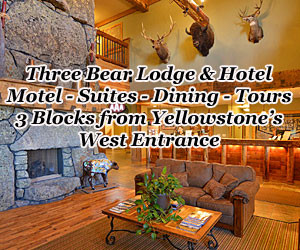 Three Bear Lodge - Yellowstone Park Lodging : Located 3 blocks from the West entrance, Three Bear Lodge offers the best in West Yellowstone lodging. Open year-round with a choice of Lodge and Motel rooms for all budgets, plus book in-park Yellowstone van tours to see area wildlife, geysers and attractions.